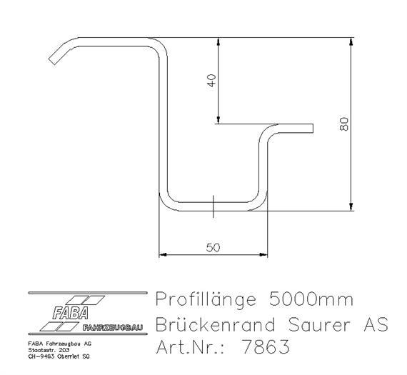 Brückenrand 4x2 AS 5000mm Rohling