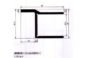 Einfassprofil 30.5 x 60 mit Rand elox. ( Rückladen ) L =6500
