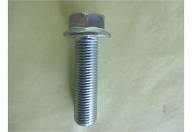 Rippschraube M14x1.5 L= 50 mm verzinkt